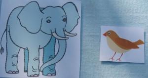 слон и воробей